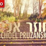 """Chozer Elecha,"" by Michoel Pruzansky"