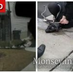 Dog Attacks Two Children In Monsey, Yungerman Saves The Day