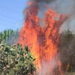 Gaza Incendiary Balloons Ignite Over 35 Fires in Southern Israel Shabbos